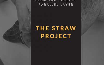 PBL Exemplar – The Straw Project